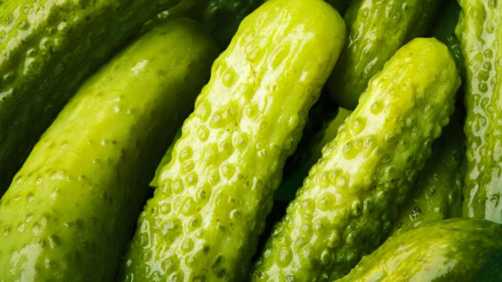 What is the history of Pickles?