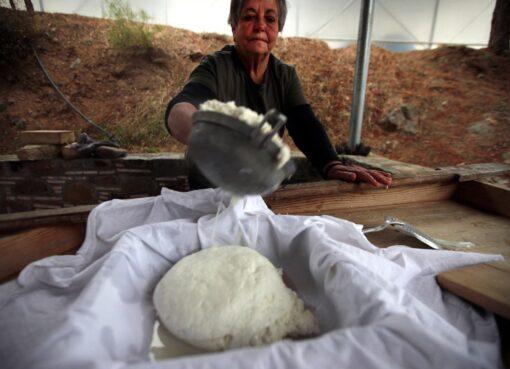 Halloumi Cheese, the pride of Cyprus